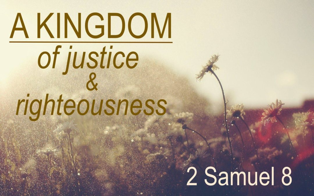 2 Samuel 8